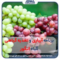 برنامه-آبیاری-و-تغذیه-گیاهی-انگور-min