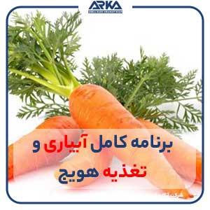 برنامه آبیاری و تغذیه هویج